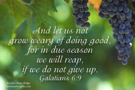 Galatians6.9