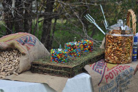 country wedding snacks