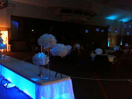 pom poms with LED's