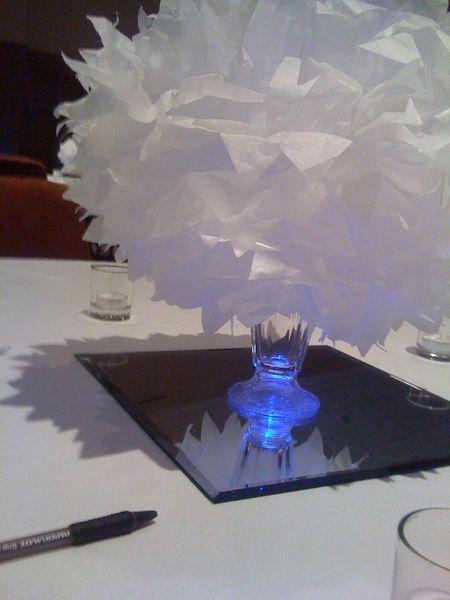 pom poms with LED's