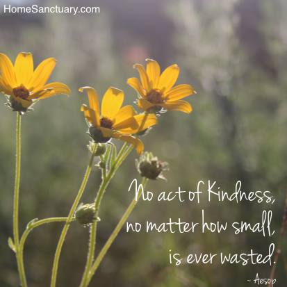 Kindness is never wasted.