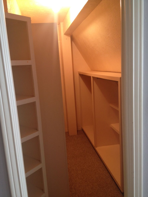closet purge