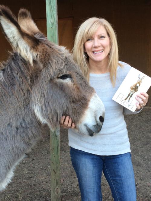 Flash the donkey