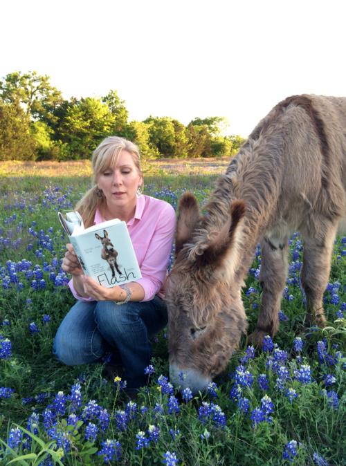 Flash the donkey Rachel Anne Ridge