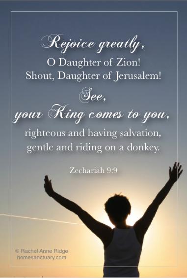 Zech. 9:9