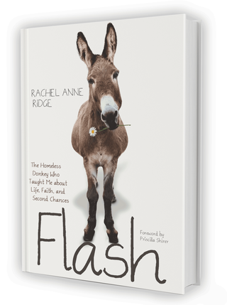Book-cover-flash-white-764x1024