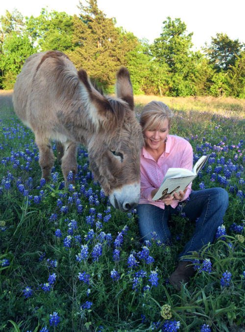 Flash the donkey sees his book