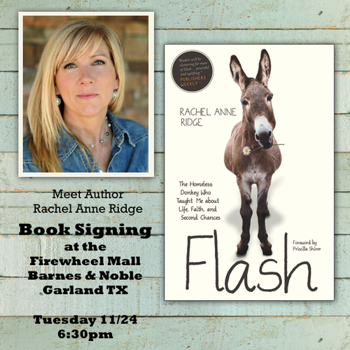 Rachel Anne Ridge book signing