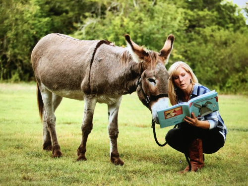 Rachel Ridge and Flash the donkey